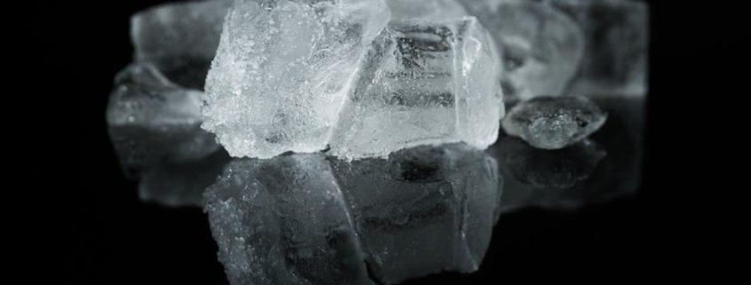 bacterias en los hielos